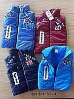 Жилет куртка детская ( С 3-5 лет )