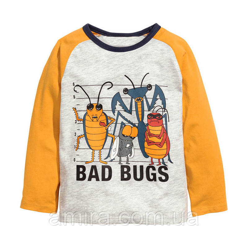 Кофта для мальчика Злые жуки Little Maven (4 года)