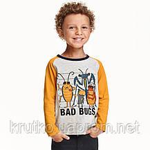 Кофта для мальчика Злые жуки Little Maven (4 года), фото 2
