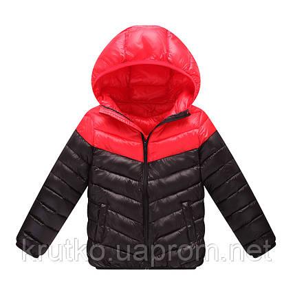 Куртка весенняя детская, красный-черный Berni, фото 2