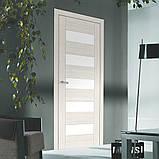 Двери межкомнатные Омис Deco 04 Cortex, цвет дуб bianco, фото 2
