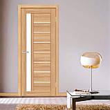 Двери Омис Deco 09 Кортекс (Cortex), цвет tobacco, фото 2