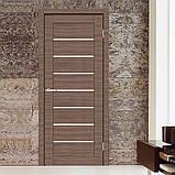 Двери Омис Deco 10 Кортекс (Cortex), цвет amber line, фото 2