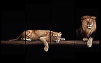 Модульная картина Interno Холст Львы на бревне 126x77см (R1703L)