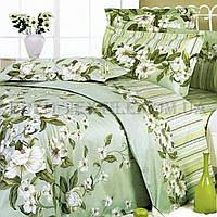 Постельное бельё Теп 150х215 Жасмин 735, Зеленый