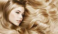 Особенности строения и цикли жизни волос