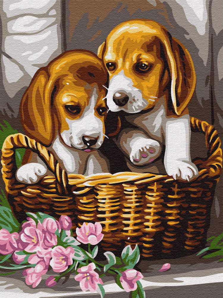"""Картина по номерам. Brushme """"Собачки в корзине"""" GEX5276"""