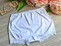 Панталоны (шорты) HNX короткие хлопок L (48-50) белые (8800-01)