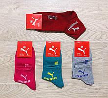 Носки спортивные демисезонные средние хлопок PUMA размер 36-41 ассорти