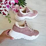 Женские зимние замшевые кроссовки на высокой подошве (пудра), фото 4
