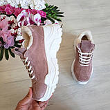 Женские зимние замшевые кроссовки на высокой подошве (пудра), фото 5