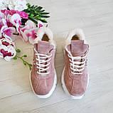 Женские зимние замшевые кроссовки на высокой подошве (пудра), фото 2