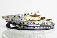 Светодиодная LED лента гибкая 12V PROLUM IP20 2835\120 Light, Белый (5500-6000К), фото 1