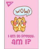 Блокнот А7 Fluffy cats  891424