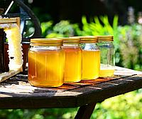 Україна збільшила експорт меду на 20%