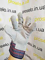 Перчатки защитные рабочие. Intertool SP-0014. Замш+ткань. Комбинированные. Сшитая ладонь. Размер 10.5