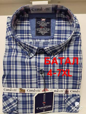 Рубашка 100 % коттон Cottarelli батал, фото 2