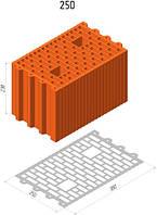 Керамический блок Керамейя ТеплоКерам 25-11,6 нф м100
