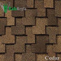 Cedar (Сида)  «Grand Sequoia®»