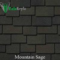 Mountain Sage (Мантин Сейдж) «Woodland™»