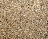 Ракушка морская, измельченная.Фракция А - 1,5мм, вес - 40 г. №901, фото 2