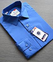 Детская синяя (васильковая) приталенная рубашка LAGARD (размеры 6)