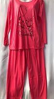 """Пижама женская с длинным рукавом, размеры M-3XL (5 цв) """"SHELLY"""" купить недорого от прямого поставщика"""