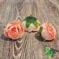 Головка роз Луиза персиковый
