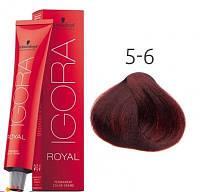 Краска для волос Schwarzkopf Professional Igora Royal 60 мл 5-6 Светлый коричневый шоколадный