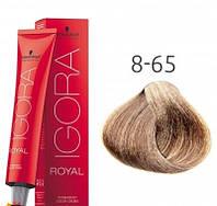 Фарба для волосся Schwarzkopf Professional Igora Royal 60 мл 8-65 Світлий русявий шоколадний золотистий