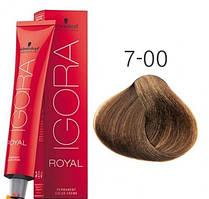 Краска для волос Schwarzkopf Professional Igora Royal 60 мл 7-00 средний русый натуральный экстра
