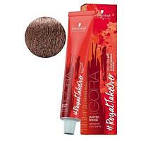 Краска для волос Schwarzkopf Igora Royal Dusted Rouge 60 мл 8-849