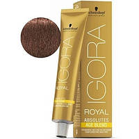 Стойкая краска для седых волос SCHWARZKOPF Igora Royal Absolutes 60 мл  6-580 Темный русый золотистый красный