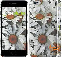 """Защитный чехол на iPhone 6 """" Ромашки """""""