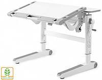 Детский стол Mealux Ergowood M цвет столешницы белый/цвет пластика серый