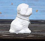 Копилка собачка Йоркширский терьер белая керамика h13см 4506700-2йорк-терьер, фото 3