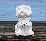 Копилка собачка Йоркширский терьер белая керамика h13см 4506700-2йорк-терьер, фото 5