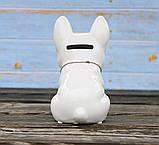 Копилка собачка Грифон белая керамика h13см 4506700-3 грифон, фото 3