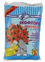 Грунт Экофлора для петунии, сурфинии, каскадии