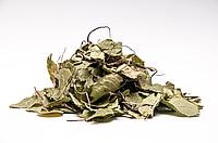 Грушанка круглолистная (трава) 500 грамм
