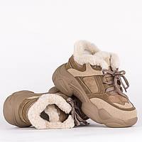 Зимние женские кроссовки Loris Bottega 147096 36 23 см