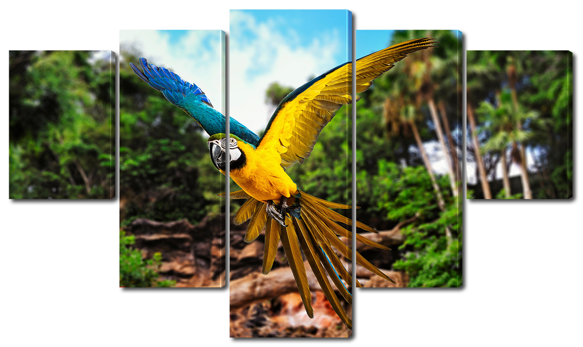 Модульная картина Interno Холст Попугай Ара 185х106см (R1566XXL)