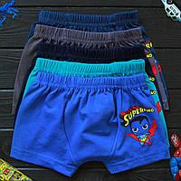Детские трусы боксеры для мальчика Nicoletta (возраст: 3, 6-7 лет) | 5 шт.