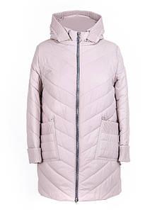 Удлиненная куртка женская демисезонная большого размера 52-66 бежевый