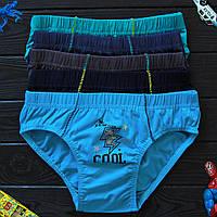 Детские трусы плавки для мальчика Nicoletta (возраст: 12-13 лет)   5 шт.
