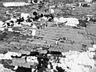 Пайеточная ткань круглая крупная (серебро), фото 3