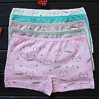 Трусы детские шортики для девочки Nicoletta (возраст: 5-6 лет) | 5 шт.