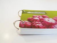 Брошюры А4 на металлических кольцах (образцы, меню кафе, банкетных залов, ресторанов, календари)