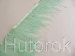 Перья страусиные на ленте (мята)