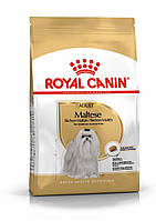 Royal Canin Maltese Adult 0,5кг- корм для собак породы мальтийская болонка